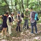 A Badia Tedalda due giornate di studio sulla flora spontanea