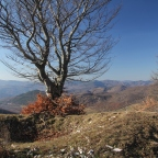 Il Parco Storico della Linea Gotica di Badia Tedalda: un cantiere aperto